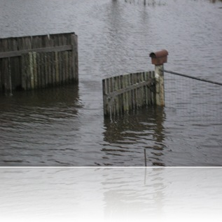 FLOODS MORE 009