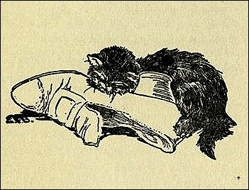 catbeingrecordof00repprich_0037