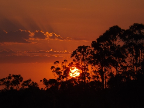SUNRISE JAN 2013 RALEIGH NSW