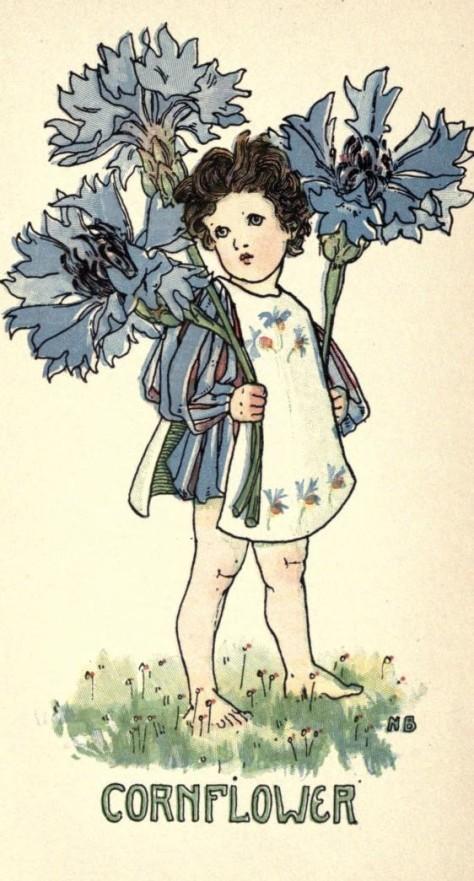 1 1 flowerbook00coybiala_0083
