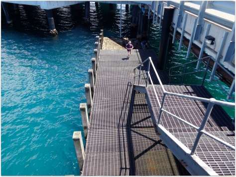 0 navy wharf