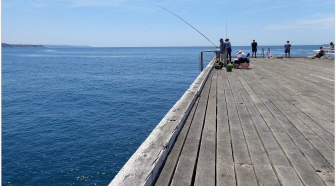 """Fishermen are born honest, but they get over it.""""   Ed Zern"""