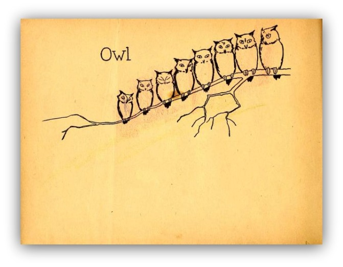 """Owl,"" said Rabbit shortly, ""you and I have brains. The others have fluff. If there is any thinking to be done in this Forest–and when I say thinking I mean thinking–you and I must do it.""  ― A.A. Milne, The House at Pooh Corner"
