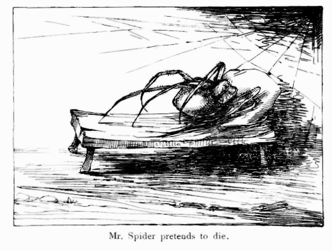 Somehow the killing of a giant spider, all alone by himself in the dark without the help of a wizard or the dwarves or anyone else, made a great difference to Mr. Baggins. He felt a different person, and much fiercer and bolder in spite of an empty stomach as he wiped his sword on the grass and put it back into its sheath.