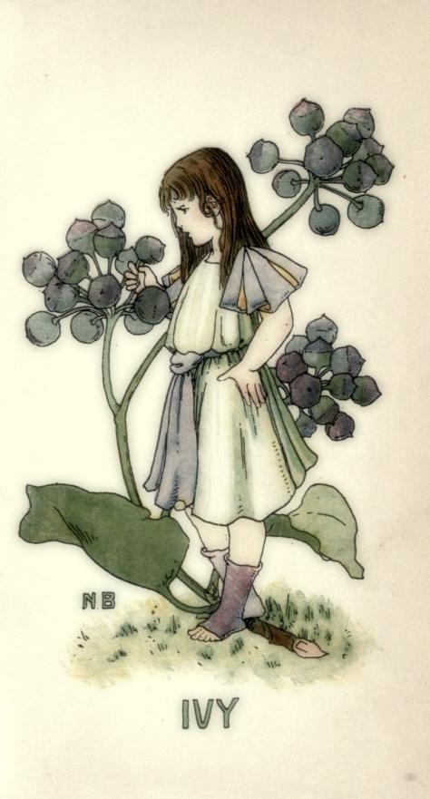 0 0 0 flowerbook00coybiala_0019