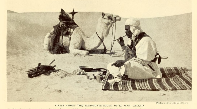 'Youth ages, but not the sea' – BEDOUIN